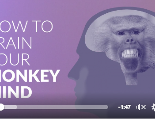 How To Train Your Monkey Mind – Meditation Is Easy